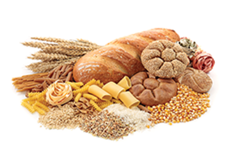Picture for category Grains, Pastas and Sides